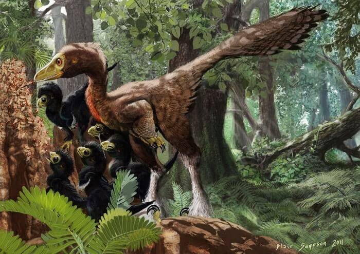Troodon Natural Habitat